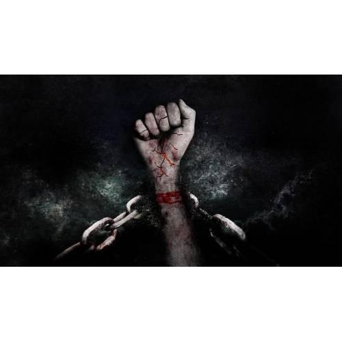 produkt - Ludzka wolność. W meandrach współczesnych zagrożeń