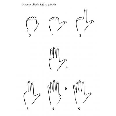 Metoda zautomatyzowanego rachowania oparta na układzie liczb na palcach