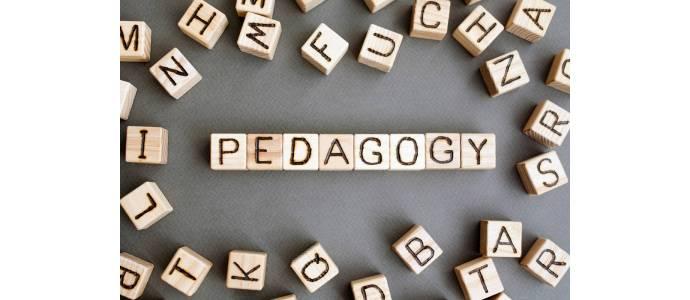 Jaką rolę w systemie nauk pedagogicznych pełni pedagogika społeczna?